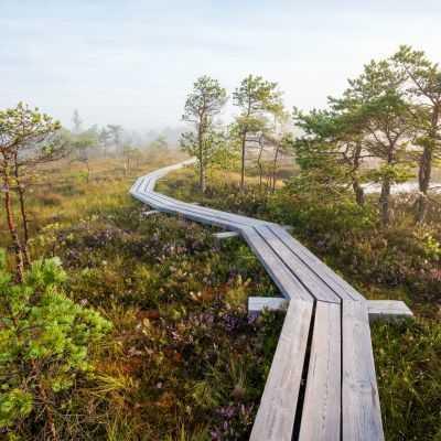 Природные парки и тропы