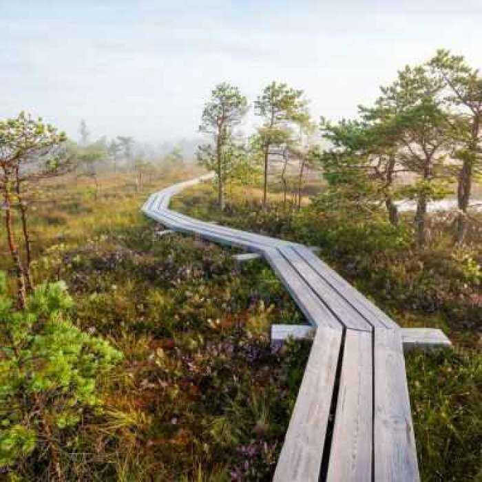 Gamtos parkai ir takai