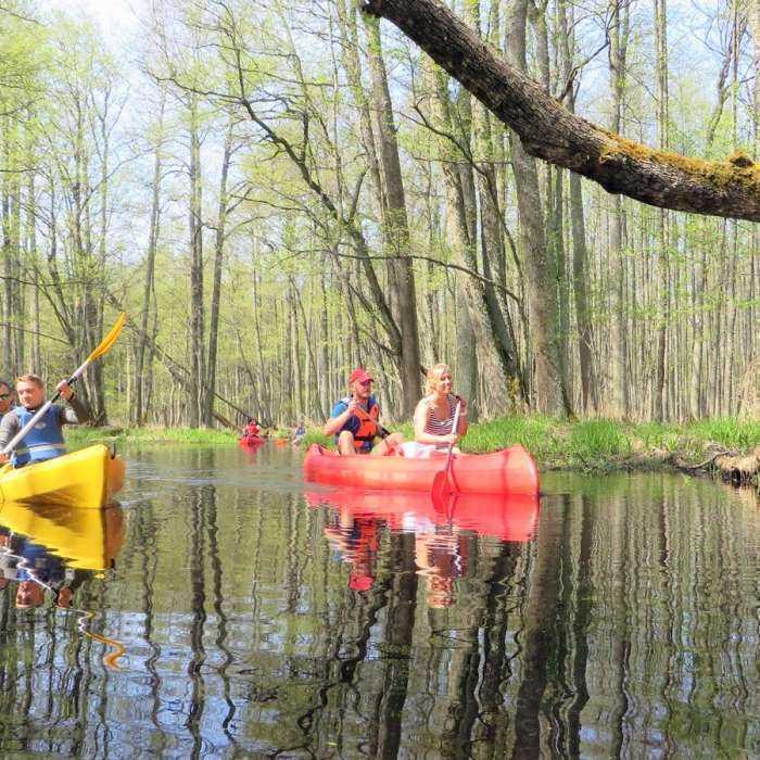 Rafting along Vecslocene river