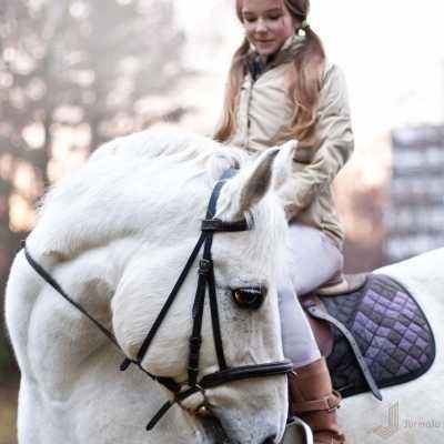 Прогулки на коне
