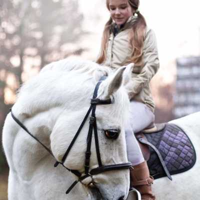 Hobusega ratsutamine