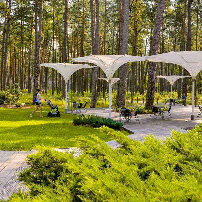 Dzintarų miško parkas