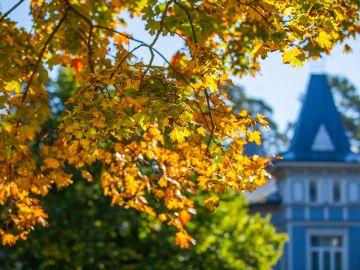Осенний отдых в Юрмале для всей семьи
