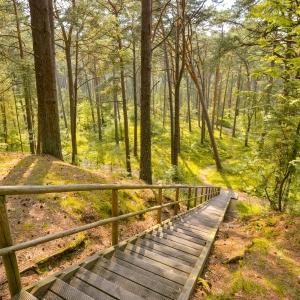 Природный парк Рагакапа