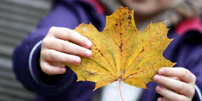 Jūrmala – iespējas ģimeniskai atpūtai rudenī